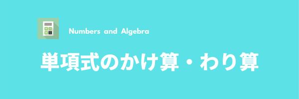 式の計算④(単項式のかけ算・わり算)